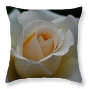 Pastel Ebb Tide Throw Pillow
