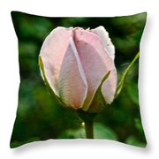 Pastel Rose Petals Throw Pillow