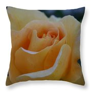 Pastel Tangerine Throw Pillow