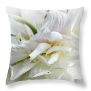 Pastels And Curls Throw Pillow