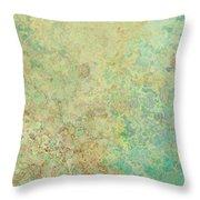 Pastle Green Stone Throw Pillow