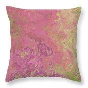 Pastle Pink Stone Throw Pillow