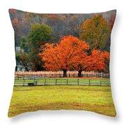 Pastoral Autumn Throw Pillow
