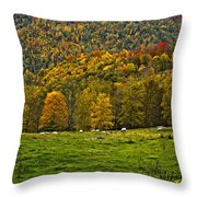 Pastoral Painted Throw Pillow