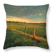 Pasture Sunrise Throw Pillow