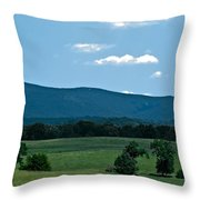 Pastureland Grazers Throw Pillow