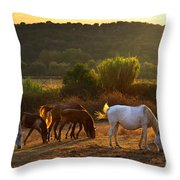 Pasturing Horses Throw Pillow