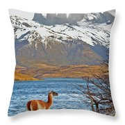 Patagonia Throw Pillow