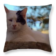 Patches From Assisi Throw Pillow