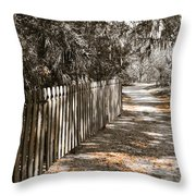 Path Along The Fence Throw Pillow
