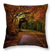 Path At Night Throw Pillow