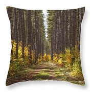 Path Into The Forest In Autumn Sault Throw Pillow