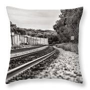Path Of Indifference Throw Pillow