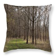 Path Of The Trees Throw Pillow