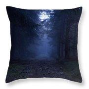 Path Through A Misty Forest Throw Pillow