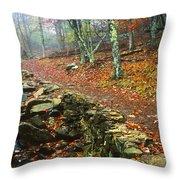 Path Through Forest, Shenandoah Throw Pillow