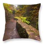Path Through The Gorge Throw Pillow