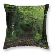 Path Through The Woods Inistioge Throw Pillow