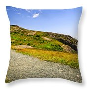 Path To Cabot Tower On Signal Hill Throw Pillow by Elena Elisseeva