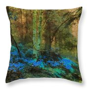 Path To Heaven Throw Pillow