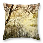 Path To The Meadow Throw Pillow