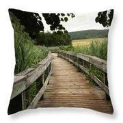 Paths Throw Pillow