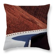 Pathways Throw Pillow