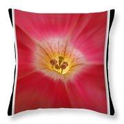 Patunia Central Throw Pillow