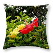 Paute Farm Flowers Throw Pillow