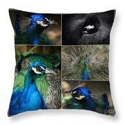 Pavo Cristatus IIi The Heart Of Solitude  - Indian Blue Peacock  Throw Pillow