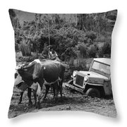 Peace Corps - Chile Throw Pillow