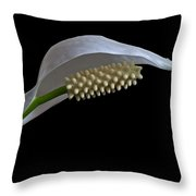 Peace Lily Flower Throw Pillow