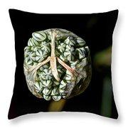 Peace Onion Throw Pillow