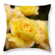 Peace Rose 2 Throw Pillow