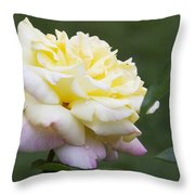 Peace Rose Throw Pillow