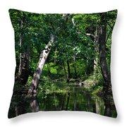 Peaceful Creek Throw Pillow