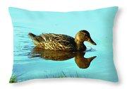 Peaceful Duck - 0993c2502e Throw Pillow