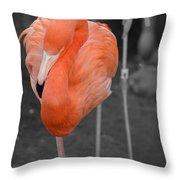 Peaceful Flamingo Throw Pillow