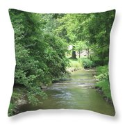 Peaceful Mountain Stream Throw Pillow