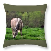 Peaceful Pasture Throw Pillow