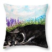 Peaceful Slumber Throw Pillow
