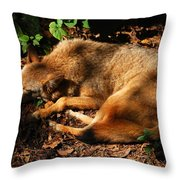 Peaceful Slumber Throw Pillow
