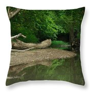 Peaceful Stream Throw Pillow