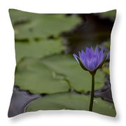 Peaceful Waterlily Throw Pillow