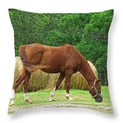 Peacefully Grazing Throw Pillow