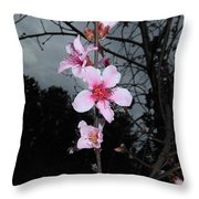 Peach Blooms Throw Pillow