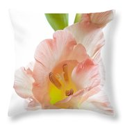 Peach Flushed Gladiolus Throw Pillow
