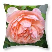 Peach Peony Flower Throw Pillow