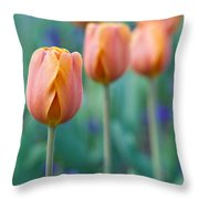 Peach Tulips  Square Format Throw Pillow