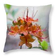 Peachy Alabama Azalea Throw Pillow